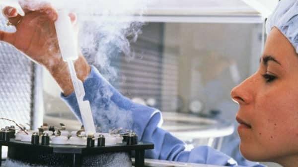 Congelamento de óvulos: Como é o processo?